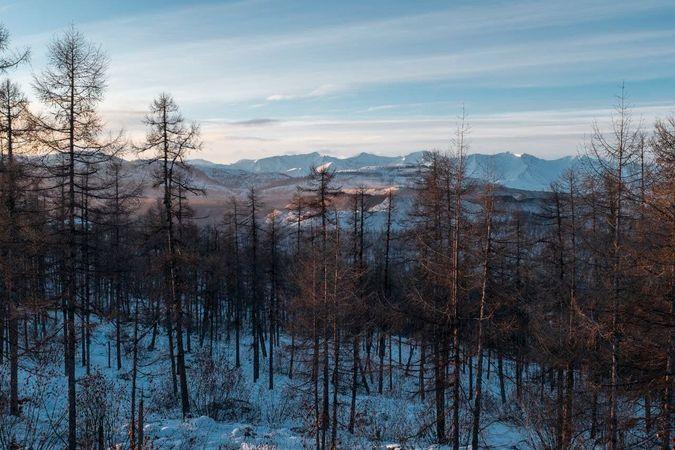Мастер-план позволит создать образцовый жилой поселок при крупнейшем в России месторождении коксующегося угля